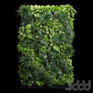 600 PLANT NEW MODELS 2021 (13)