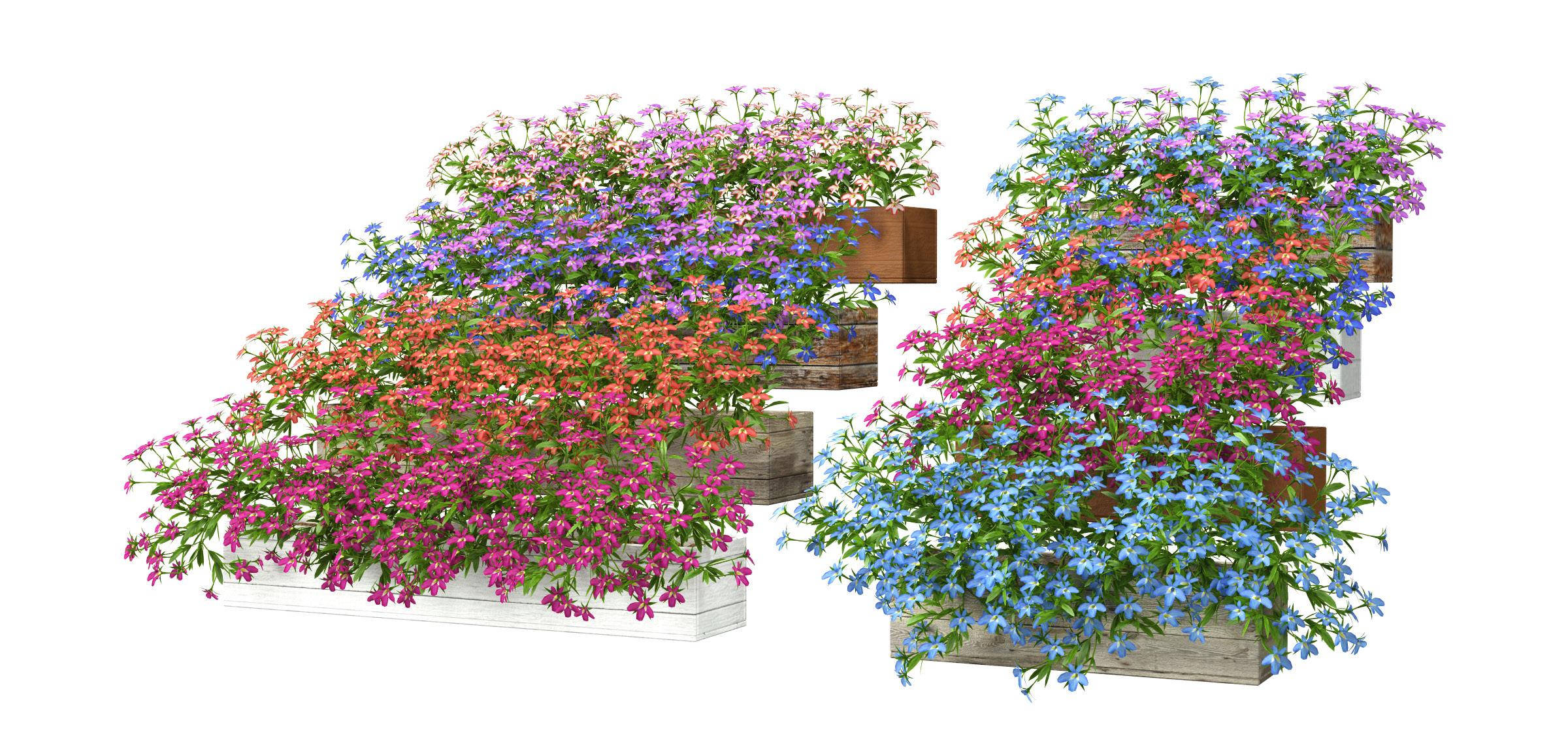 RANDOM MODELS – PRO MODELS 321 – FLOWER MODELS
