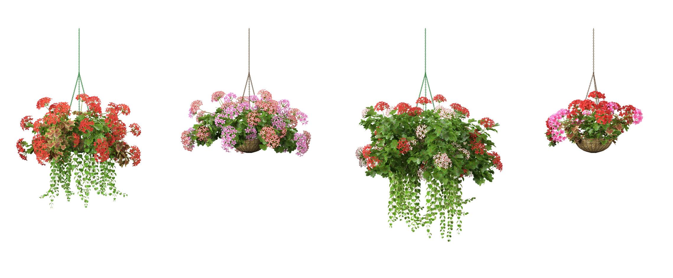 RANDOM MODELS – PRO MODELS 326 – FLOWER MODELS