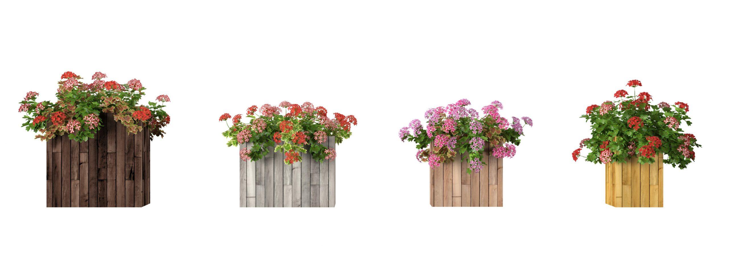 RANDOM MODELS – PRO MODELS 328 – FLOWER MODELS