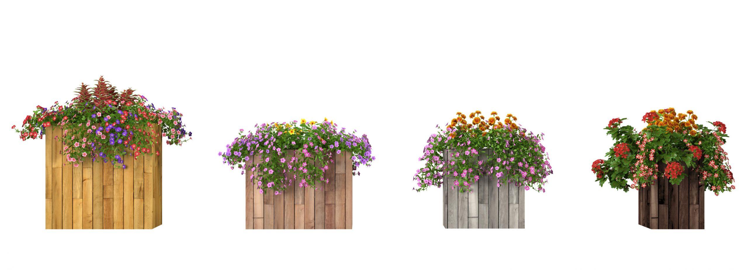 RANDOM MODELS – PRO MODELS 331 – FLOWER MODELS