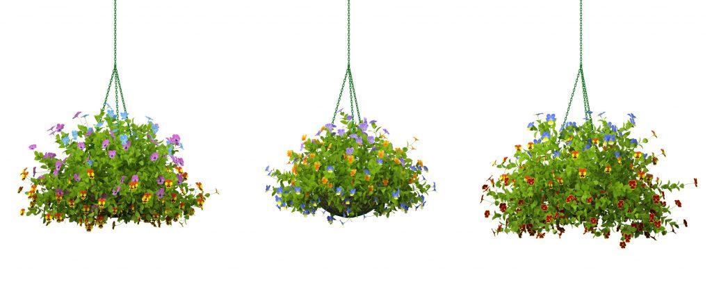 RANDOM MODELS – PRO MODELS 335 – FLOWER MODELS