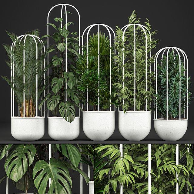 RANDOM MODELS – PRO MODELS 413 – PLANTS 3D MODEL